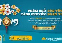 Mở bán vé máy bay dịp tết Nguyên Đán Kỷ Hợi 2019