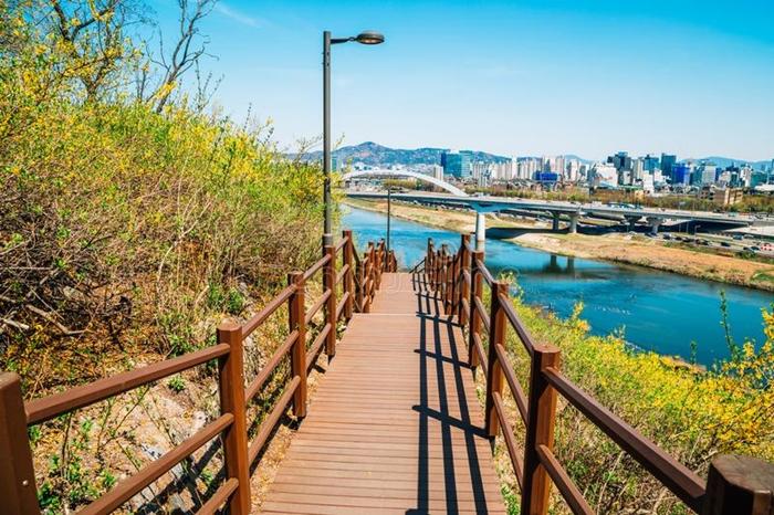 Tận hưởng các không gian xanh tuyệt đẹp khi du lịch Hàn Quốc mùa dich corona